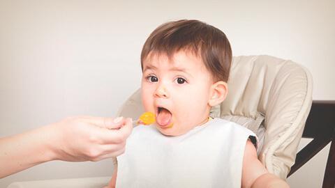 La alimentación durante los primeros 6 meses de vida.